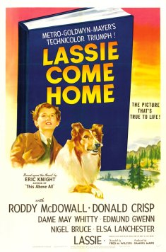 lassie_come_home_ver2_xlg
